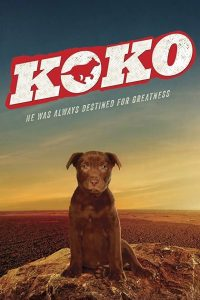 """Poster for the movie """"Koko: A Red Dog Story"""""""